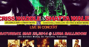 Shatta Wale Concert Live In Toronto